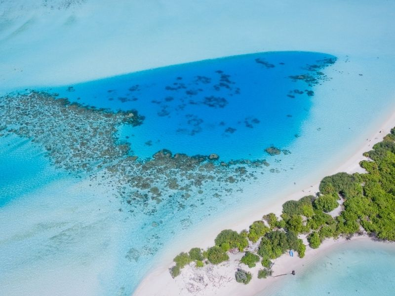 Depart to the Maldives