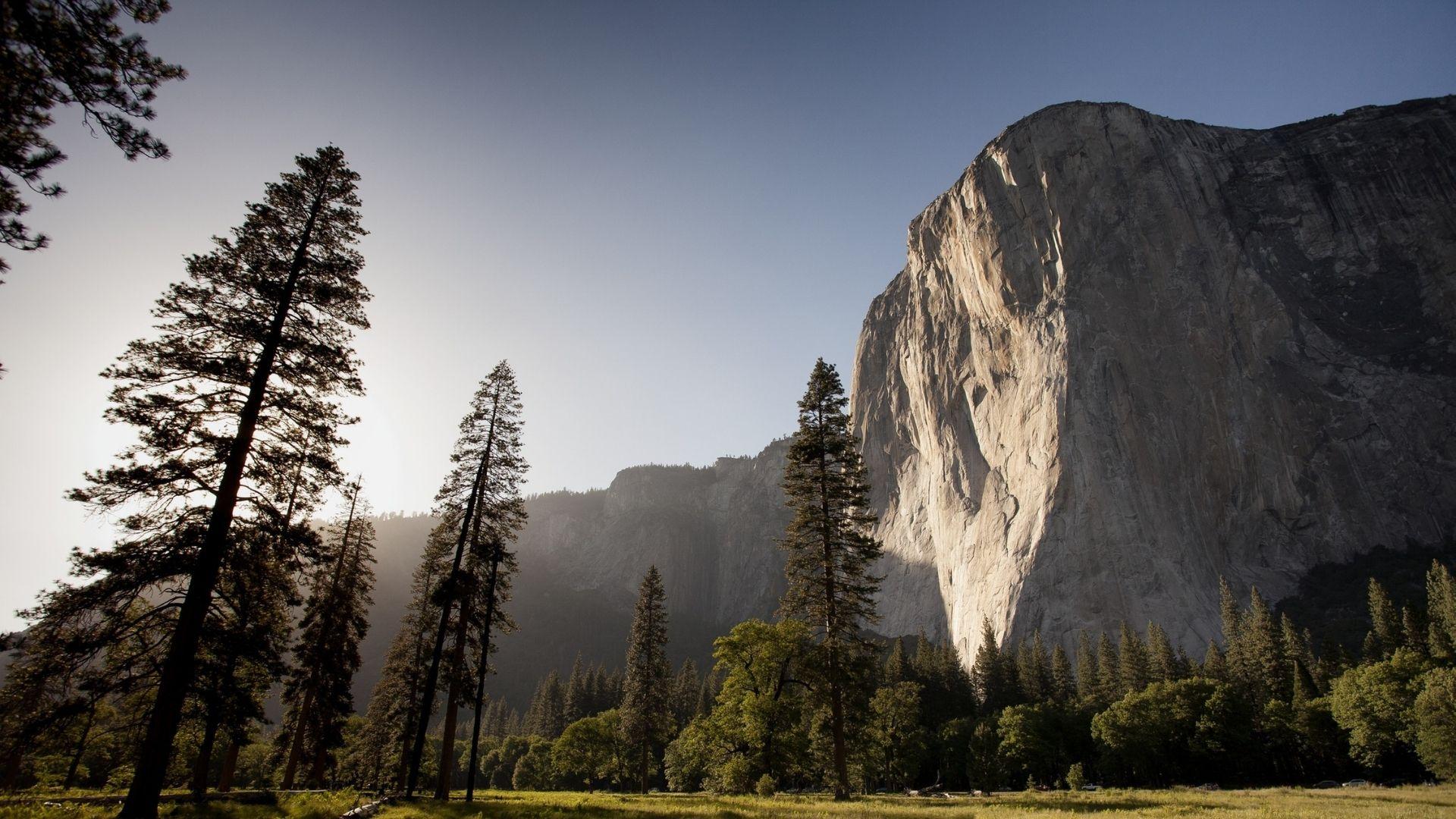 Under Canvas Yosemite