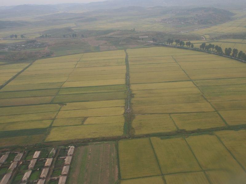 North Korean Agriculture