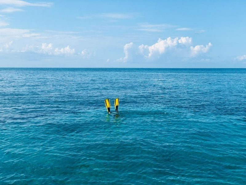 Person snorkeling in Caribbean