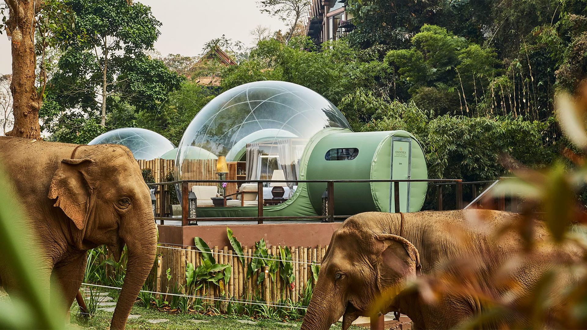 Anantara-Elephant-Camp