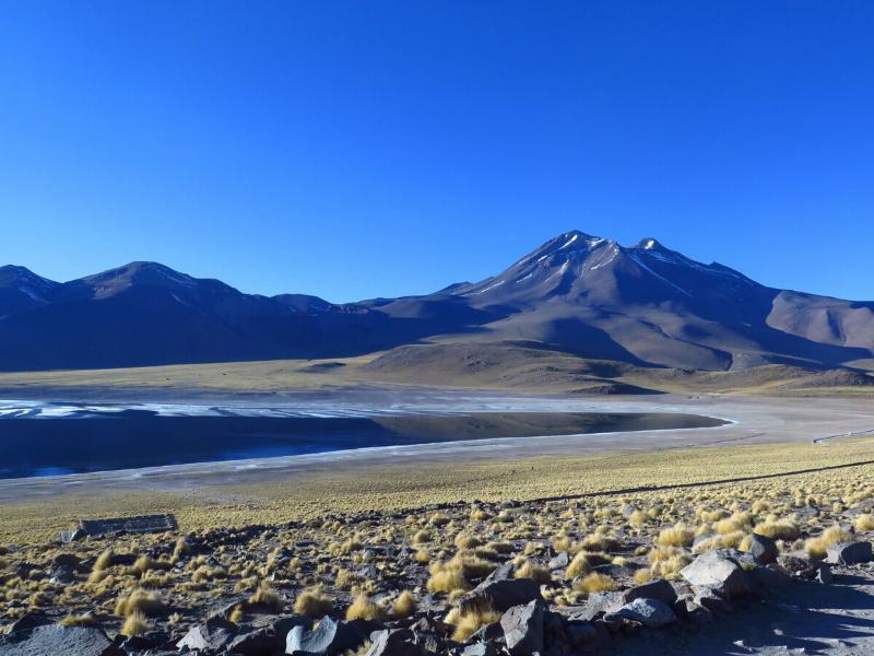 Atacama Cejar Chile