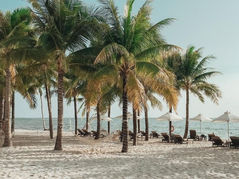 Beach and palm trees, Colombia
