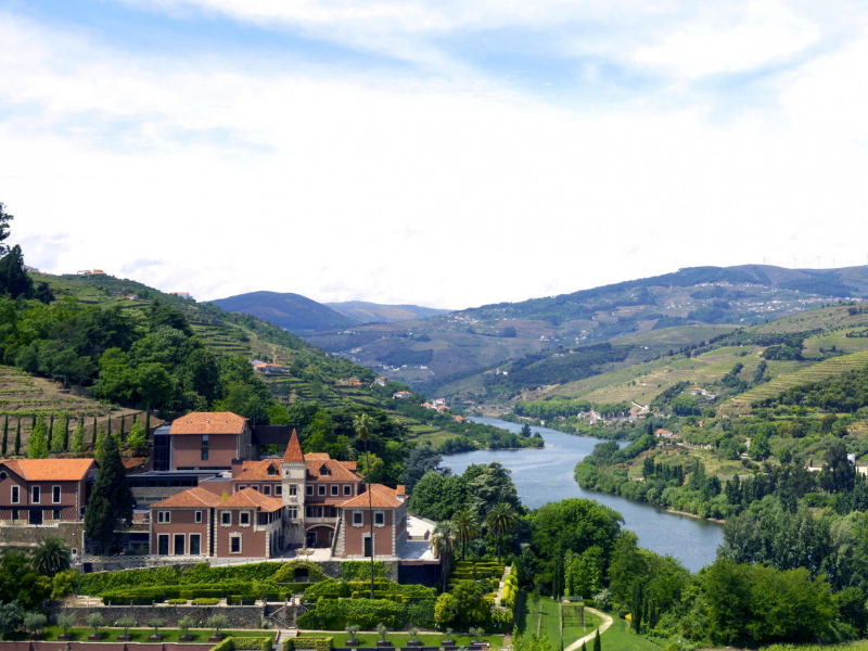 Beautiful surrounding landscape of the Douro Valley Portugal