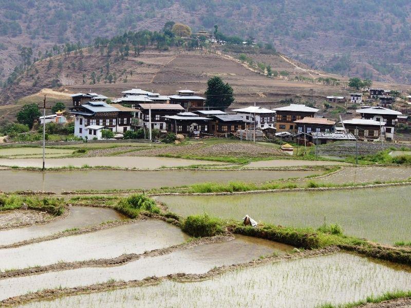 Chimi Lakhang, Punakha