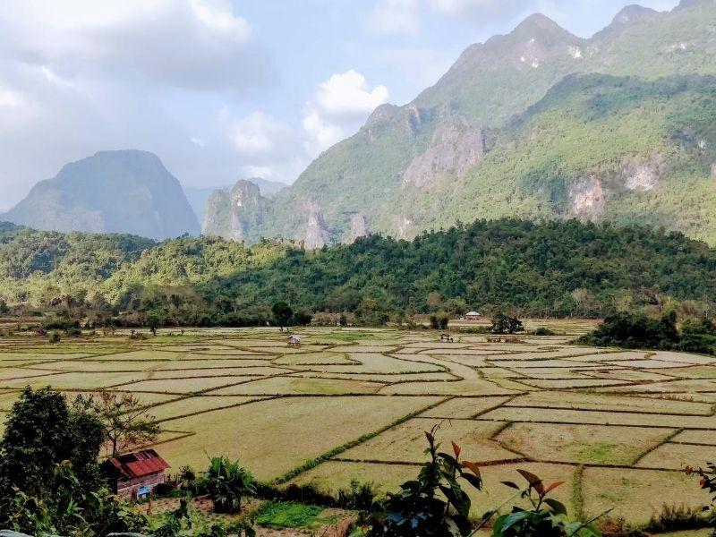 Laos crop fields