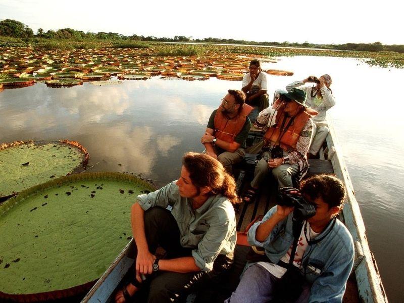 Tourists in boat on Karanambu pond