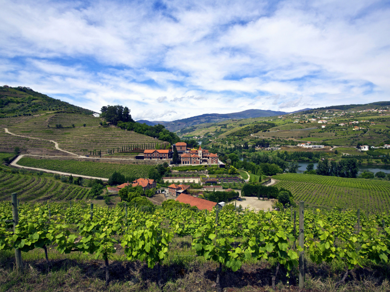 Embrace the wine culture at the Six Senses Douro Valley Portugal
