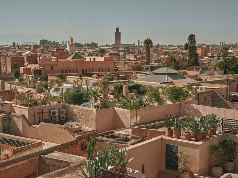Explore the Medina and historic sites of Marrakech
