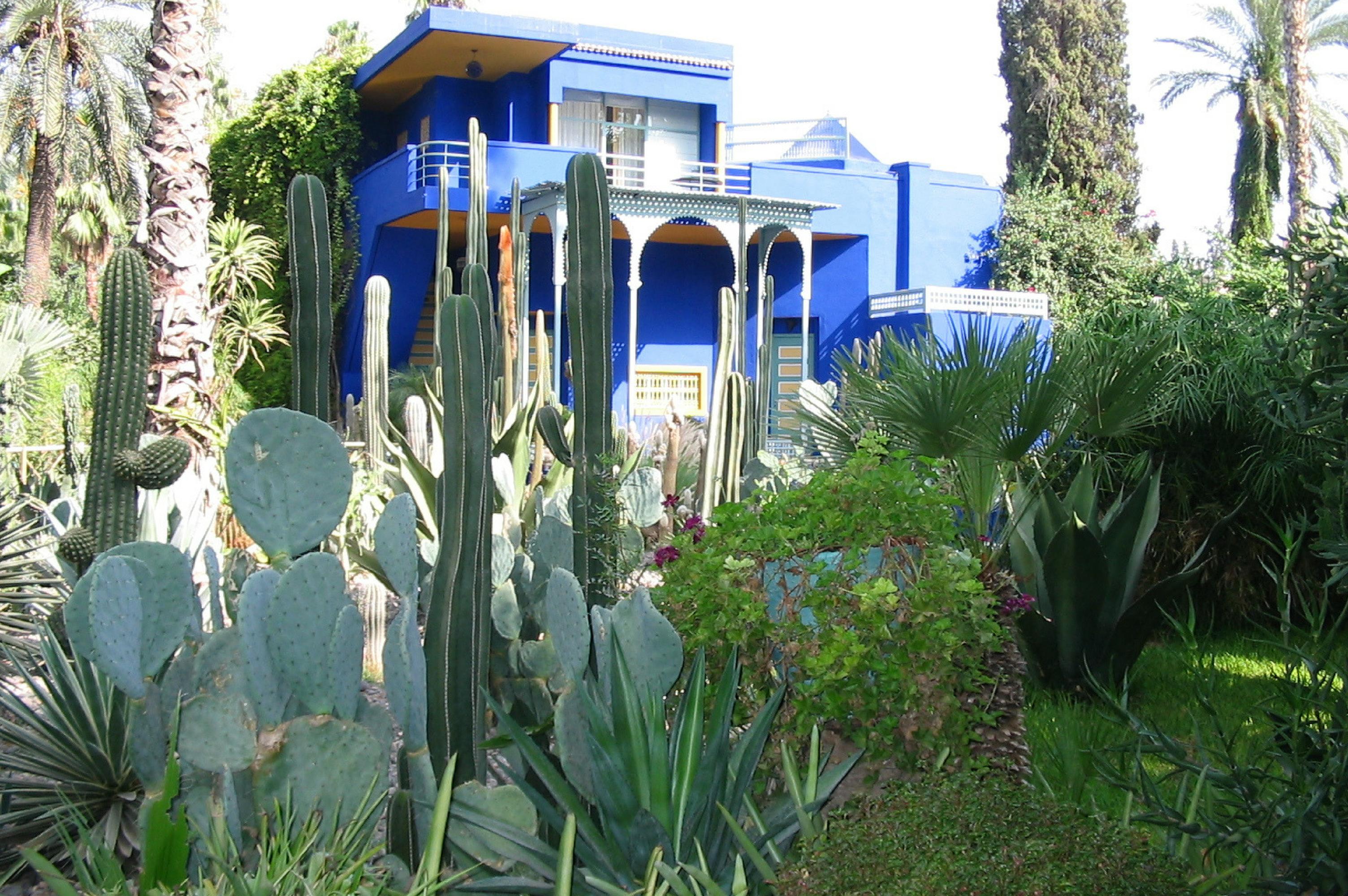 Explore the exotic gardens of Marrakech