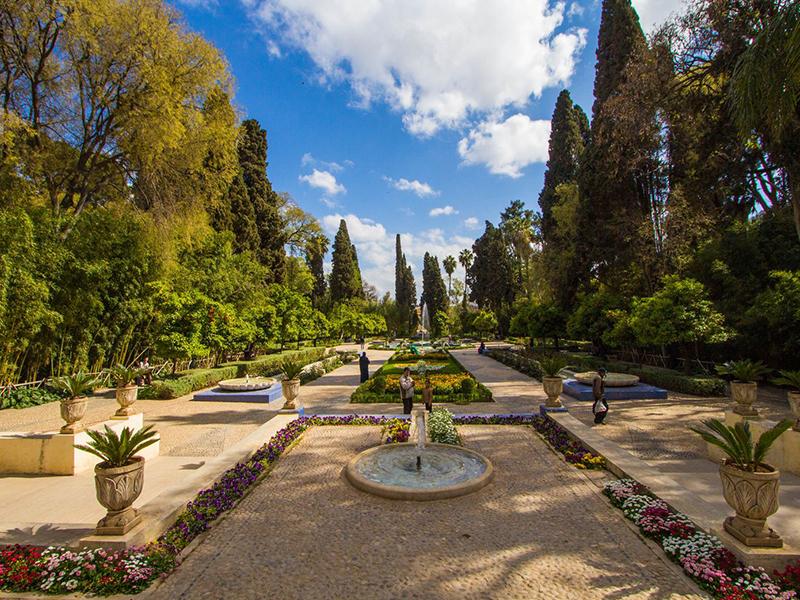 Fez Garden