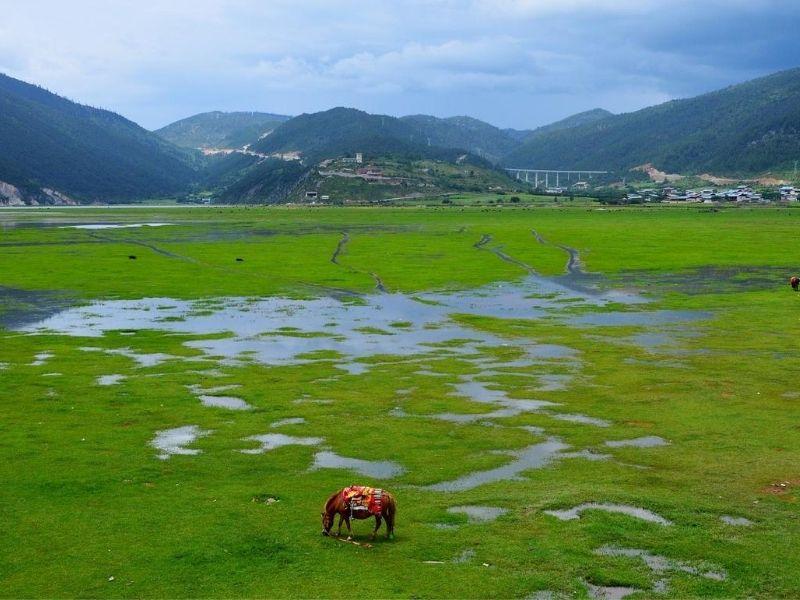 Grasslands Shangri-La