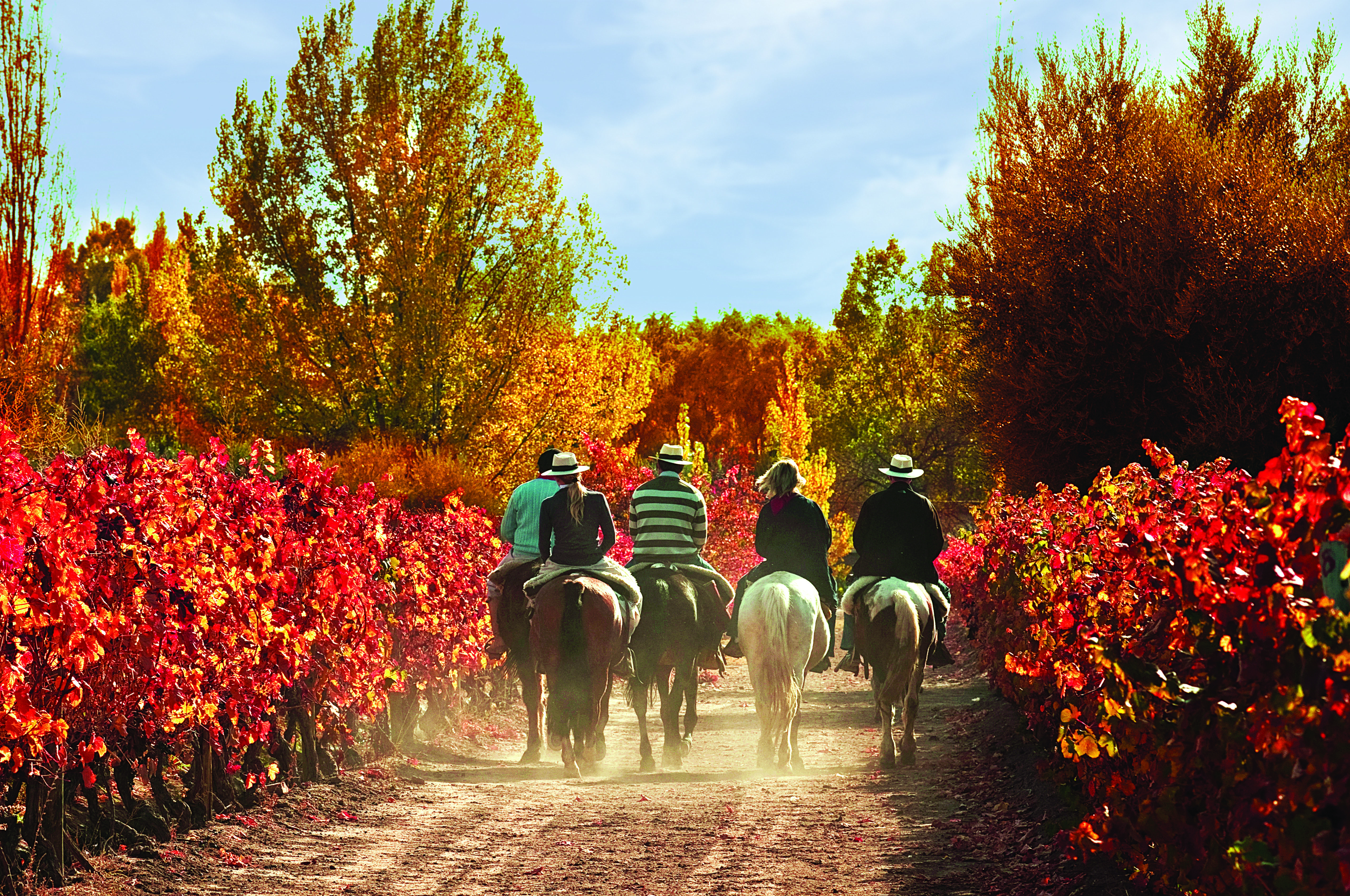 Horse Riding Expedition Argentina