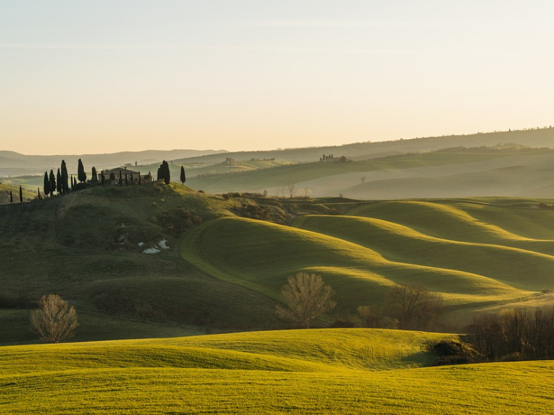 Italy - Collect your rental car and take a scenic drive through the Tuscan countryside