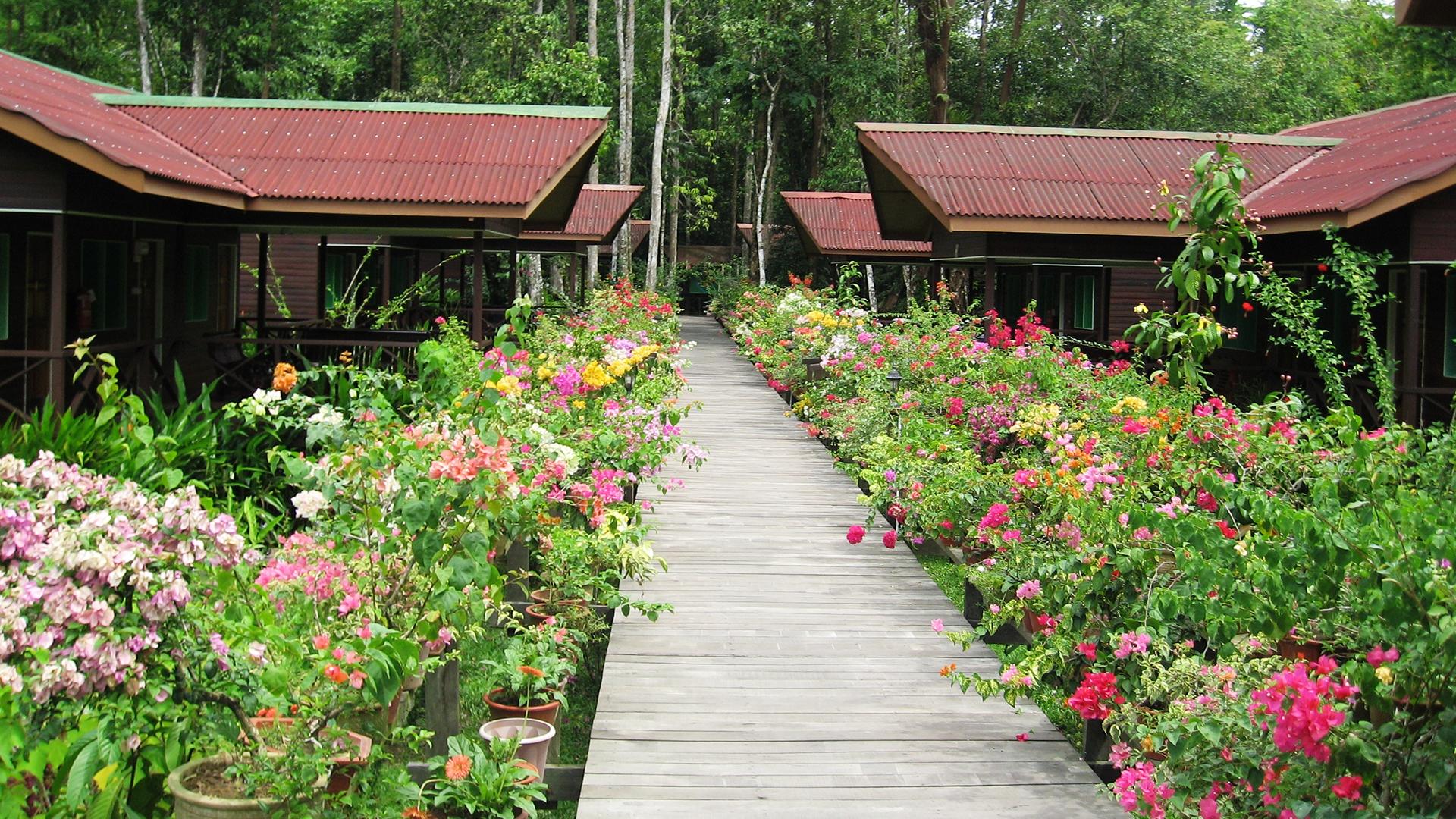 Kinabatangan Wetlands Resort