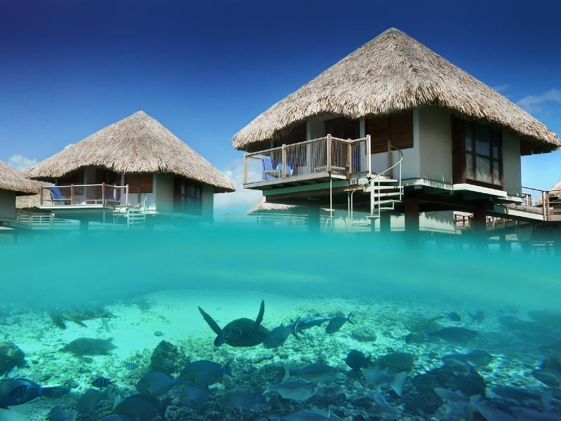 Le Meridian Bora Bora Accommodation French Polynesia