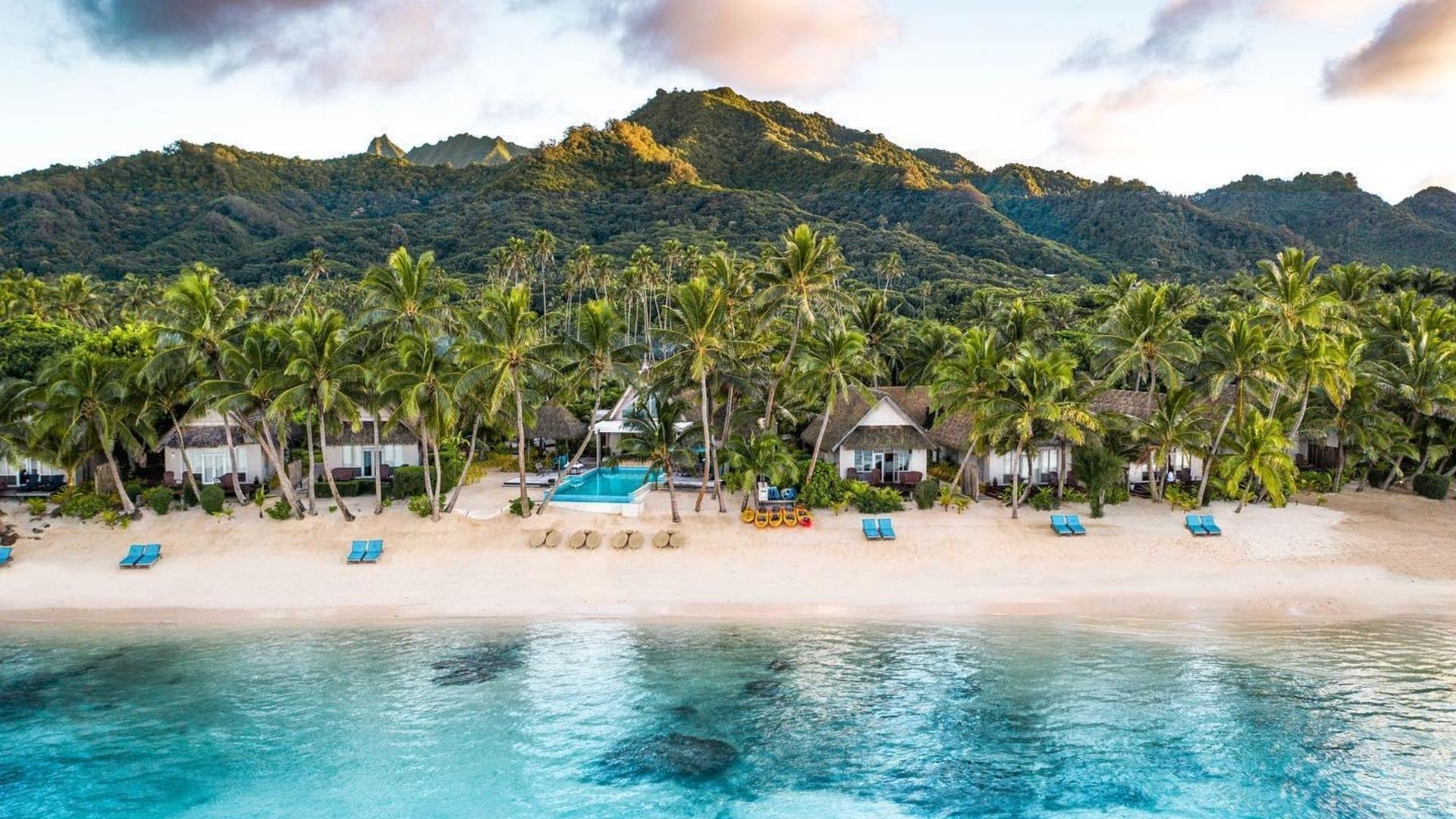 Little Polynesian