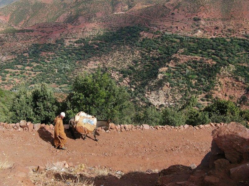 Morocco - Atlas Mountains trail