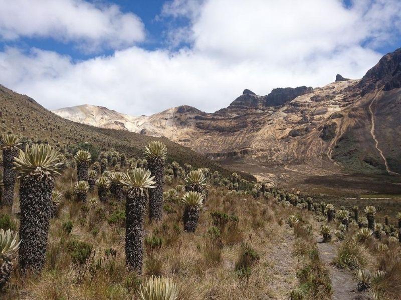 Road to Tatacoa Desert, Colombia