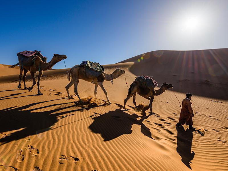 Sahara Camel Ride Morocco