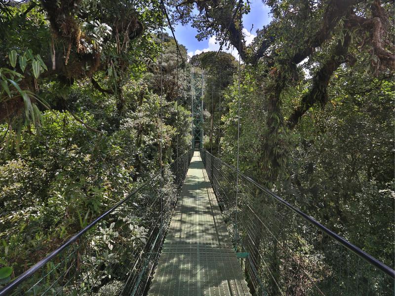 Sky Walk Monteverde Costa Rica
