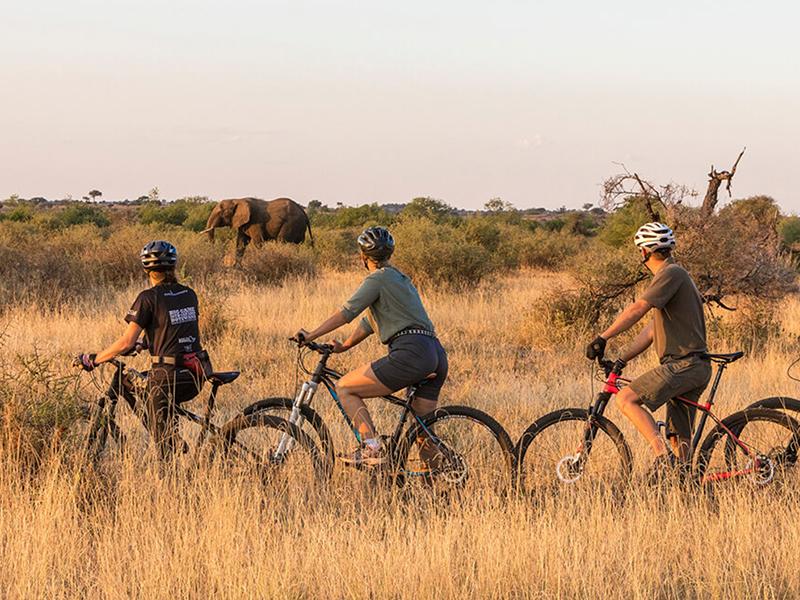 Bike Safari Botswana