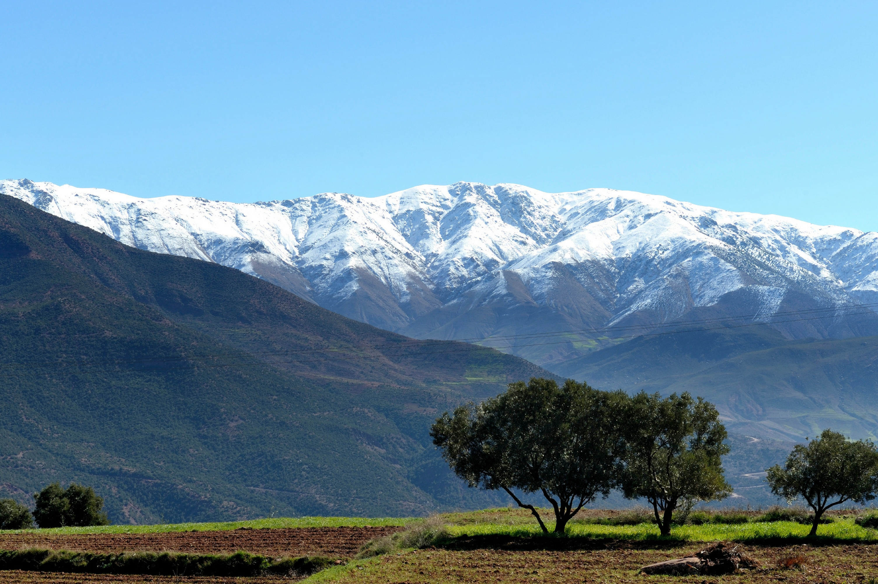 Why not travel south into the Atlas Mountains