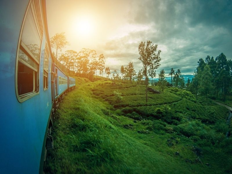 Tea train, Sri Lanka