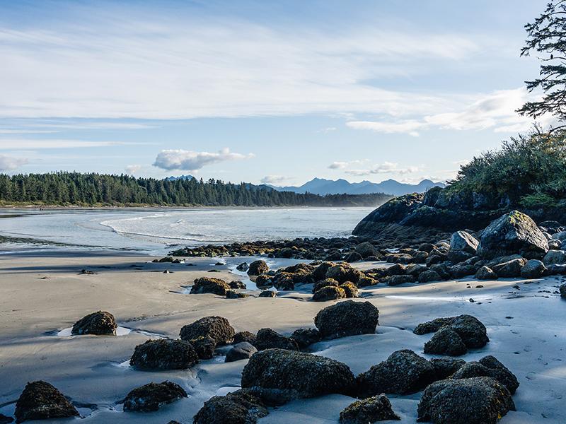Tofino Beach Canada