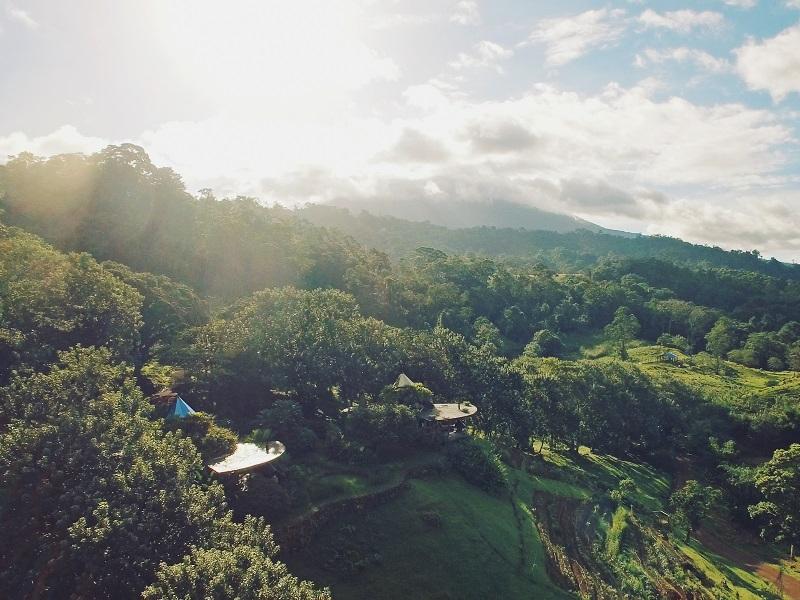 rainforest of Bijagua