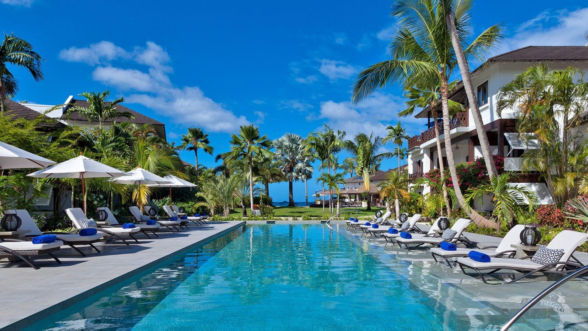 Sandpiper, Barbados